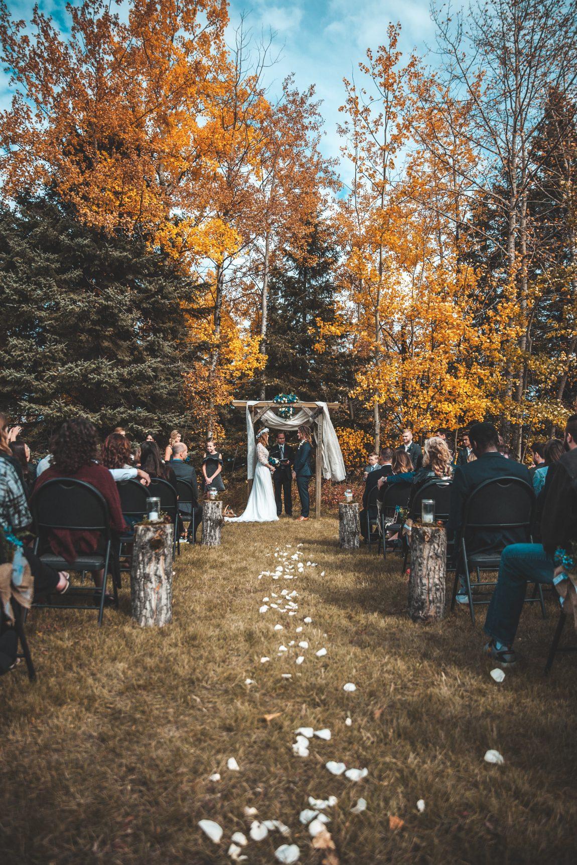 30 Elegant Backyard Wedding Ideas On A Budget Pretty Colorful Life